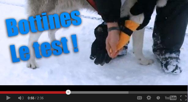 Bottines de neige pour chiens: le test en vidéo