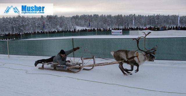 Voyage en Laponie - Jokkmokk, Suède