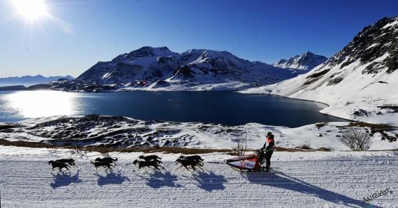 Traineau à chiens-la grande odysée 2012-Haute Maurienne- Col du Mont Cénis