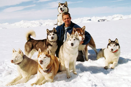 Antartica, Paul Walker