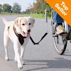 Barre latérale pour vélo et chien