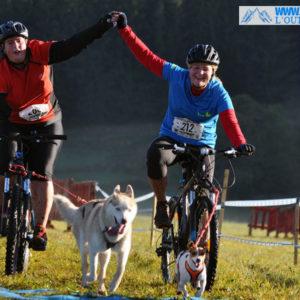canivtt-jack russel husky velo race chien