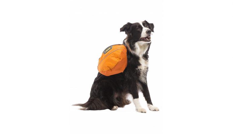 Sac à dos pour chien, Approach pack
