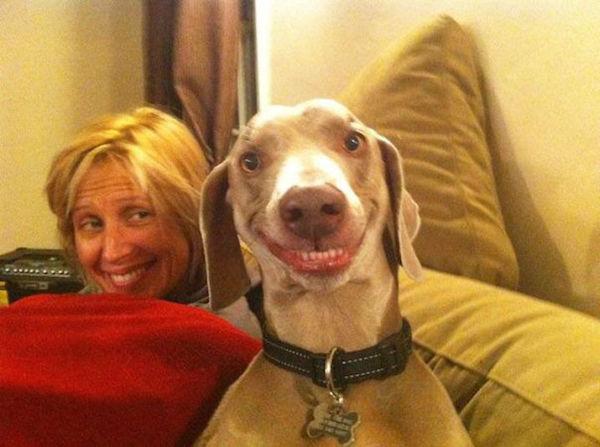 chien-sourire-maitresse