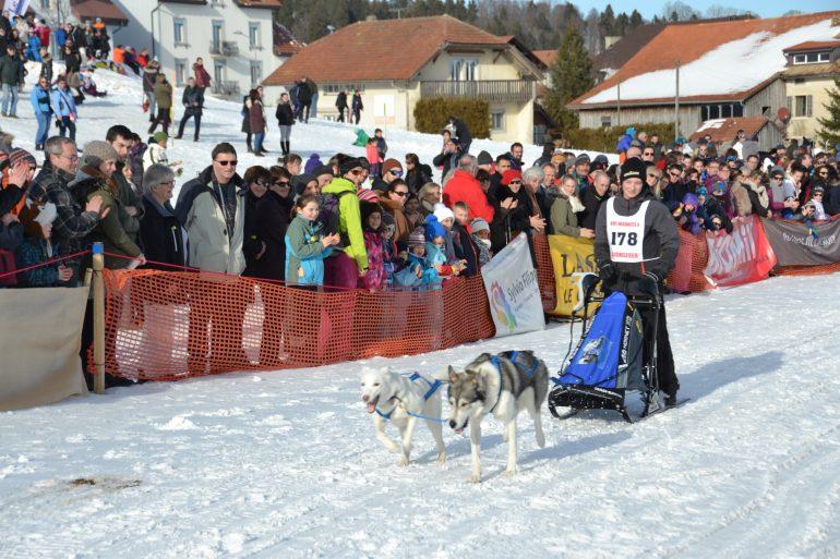 Course internationale de chiens de traîneaux de