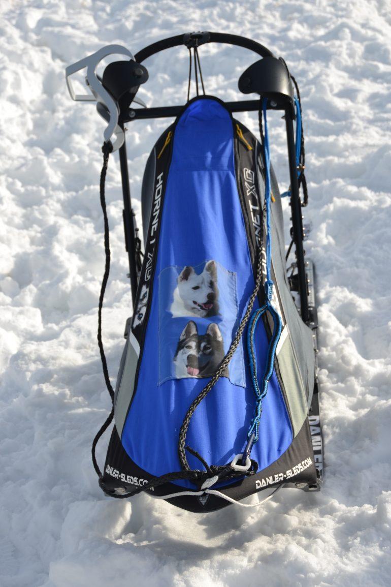 Traineau à chien bleu neige