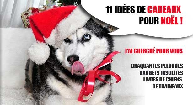 noel-husky-idees-cadeaux-615
