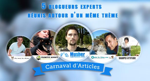Carnaval des articles