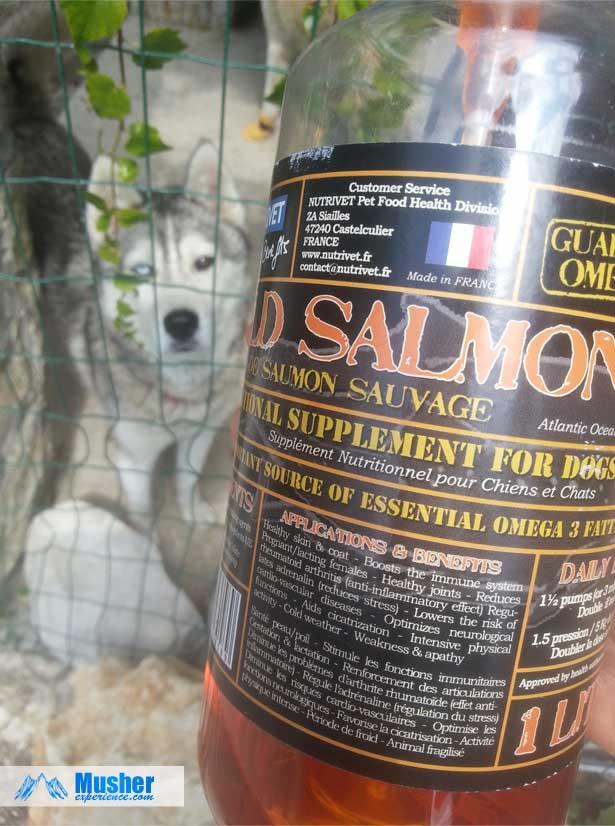 Huile de saumon sauvage pour chien