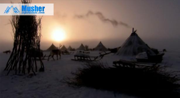 Nenetses (Nenets) de Sibérie