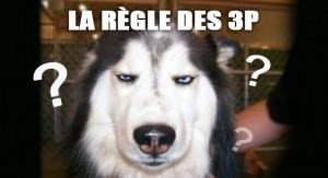Secret d'éducation canine: règle des 3P