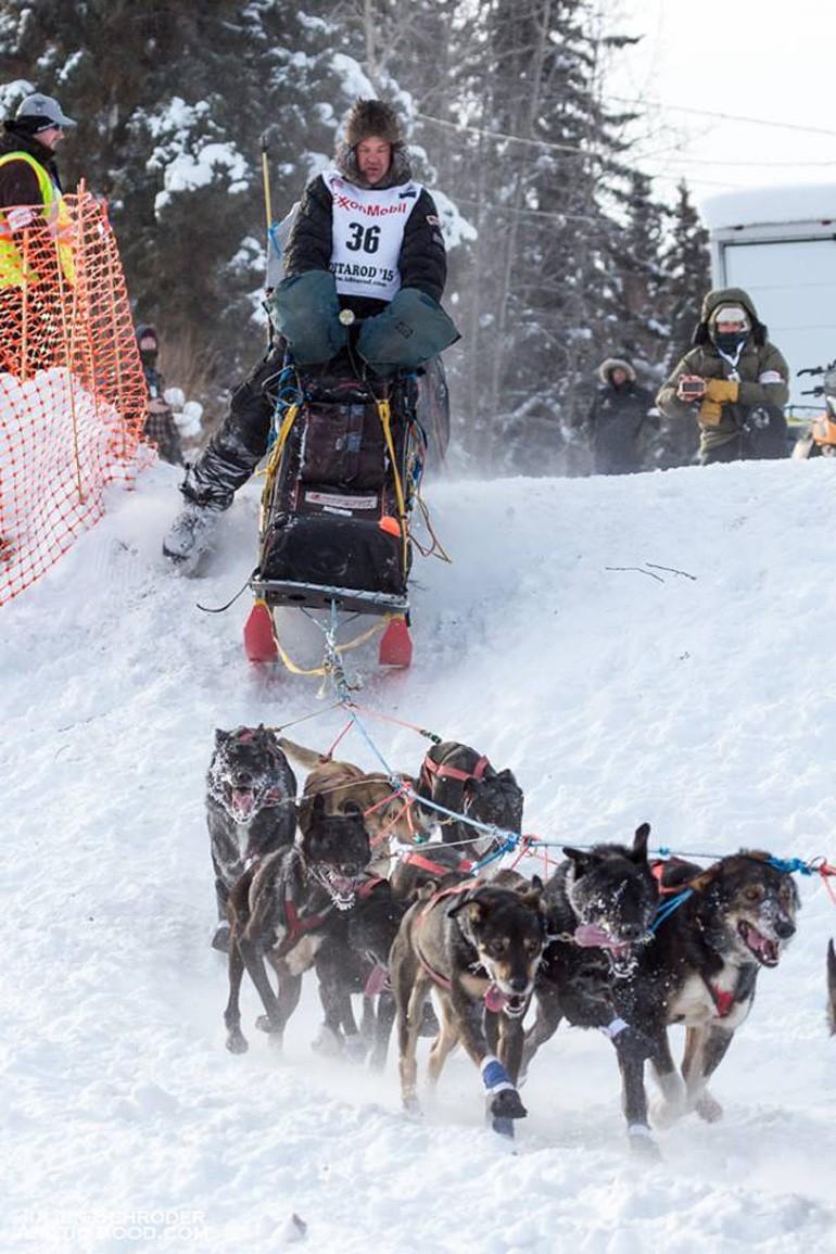 Ken Anderson et son attelage lors de l'Iditarod