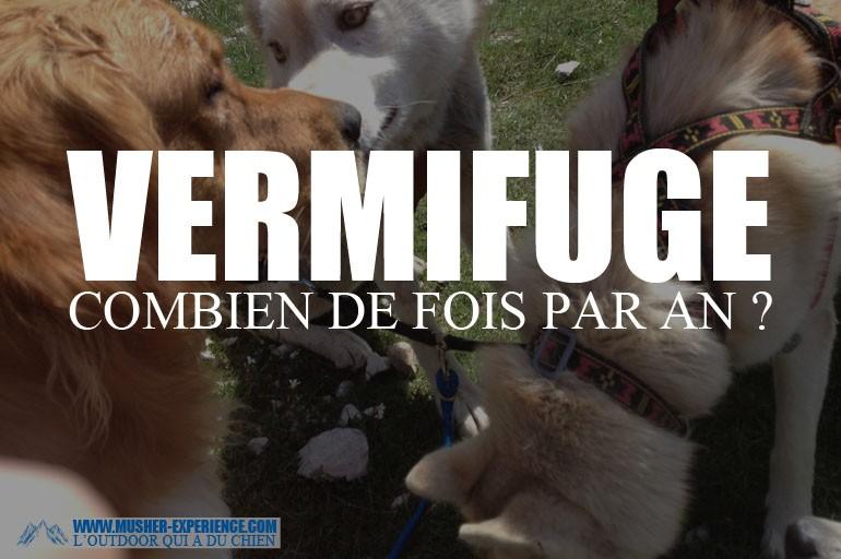 Quand donner le vermifuge son chien combien de fois par - Ramonage cheminee combien de fois par an ...