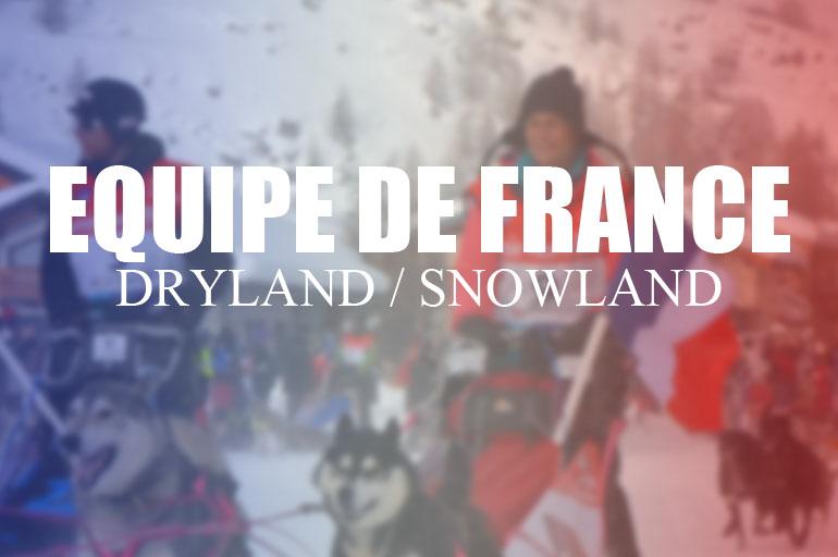 l 39 equipe de france dryland snowland 2015 2016 equipement actu et conseils canicross. Black Bedroom Furniture Sets. Home Design Ideas