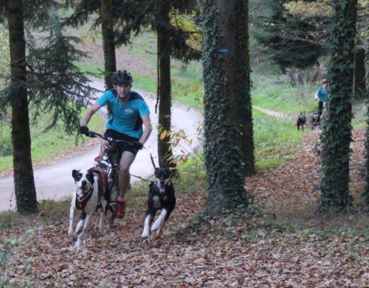 Canivtt (bikejoring) - VTT avec son chien