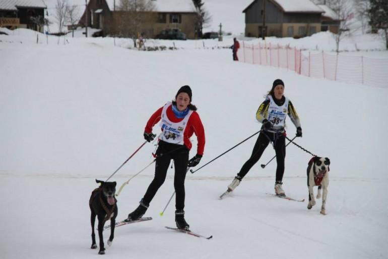 Ski Joering - ski de fond avec son chien