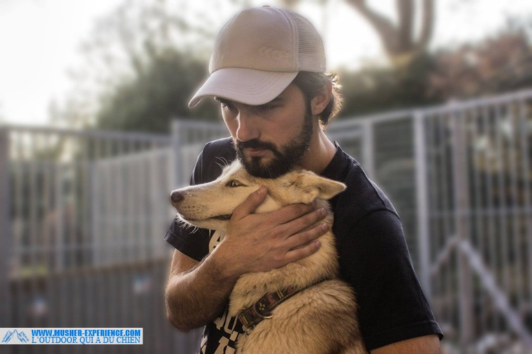 conseils canicross canivtt attelage canin
