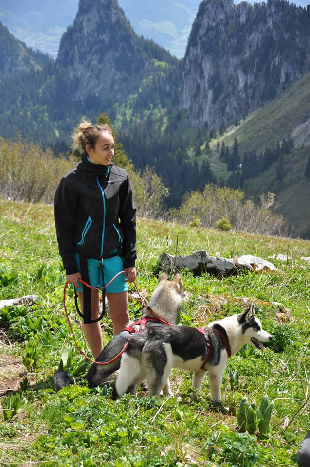 Canirando ou cani randonnée, des balades avec son chien