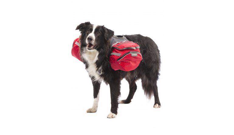 Sac à dos pour chien, Palisades pack