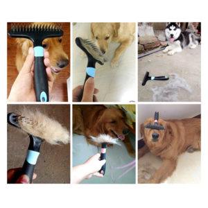 brosse a chien etrille rateau race de chien poil