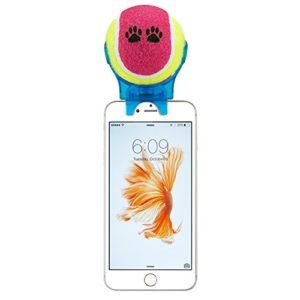 e-plg-pour-Smartphone-Fixation-Selfie-bton-selfie-Stick-Pet--Pet--Pet-Entranement-dAgility--Jouet-pour-Animaux-couleur-bleu-Selfie-bton-0