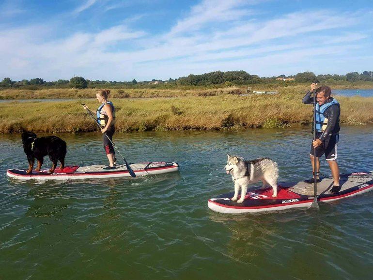 paddle board husky