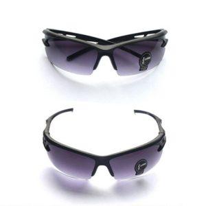 lunettes cani VTT protection éclats teintee noire