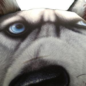 Appui tete husky siberien - coussin voiture face zoom
