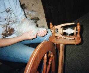 Poils chien filage