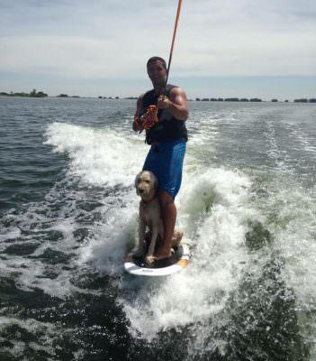 Wake surf avec chien - Credit: pinterest