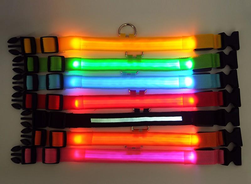 collier lumineux pour chien étanche couleur lumières