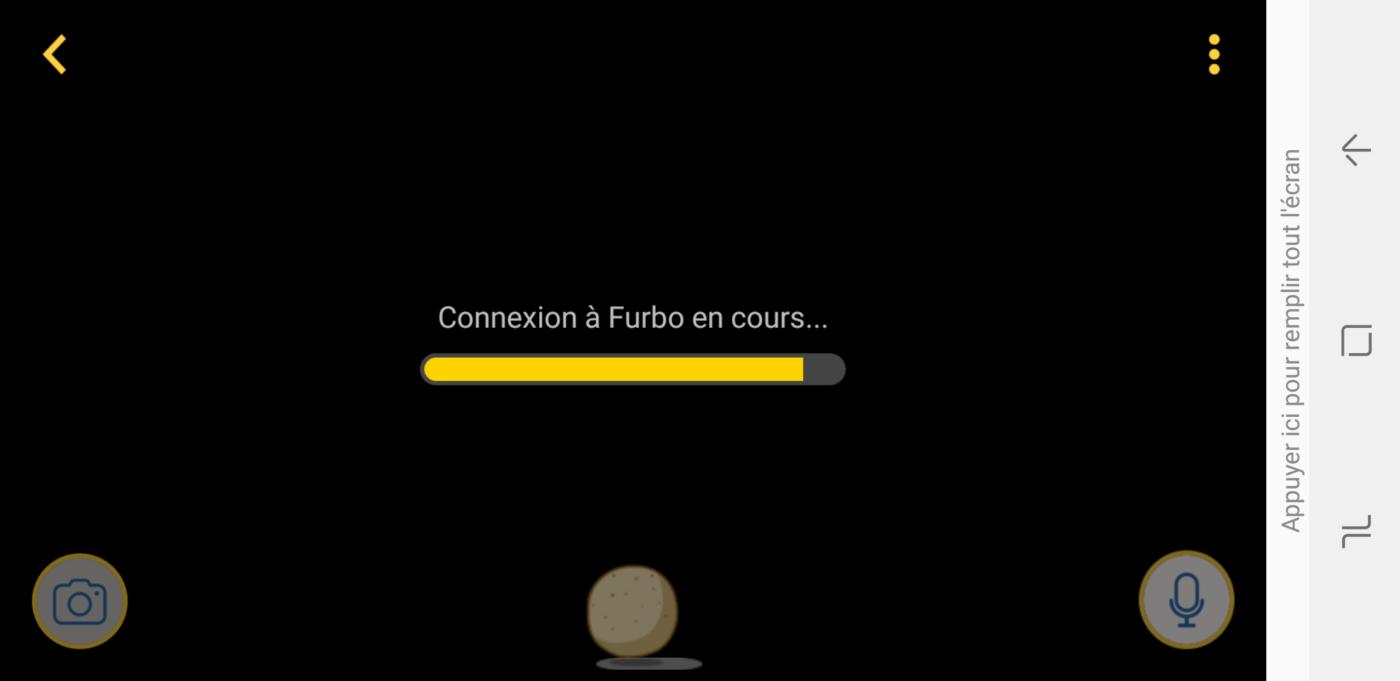 connexion rapide furbo chien
