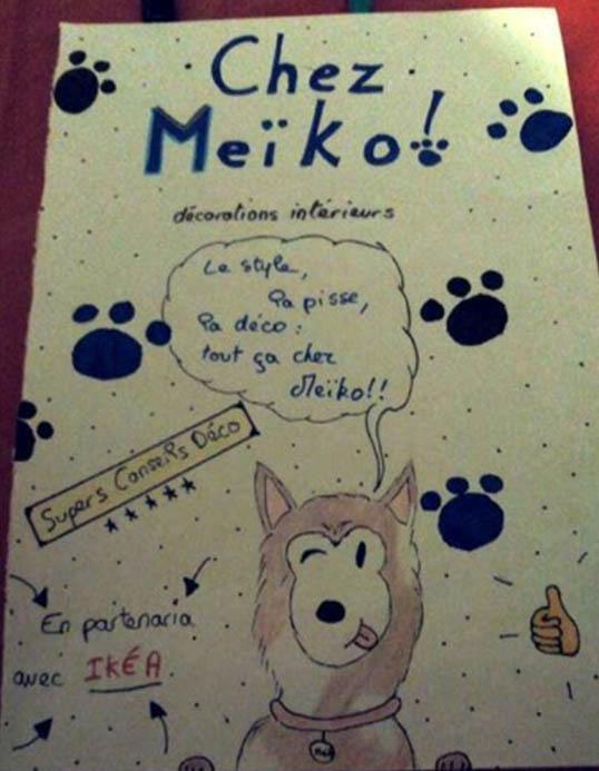 dessin husky siberien