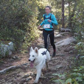 canicross des garrigues race de chien courir (1)