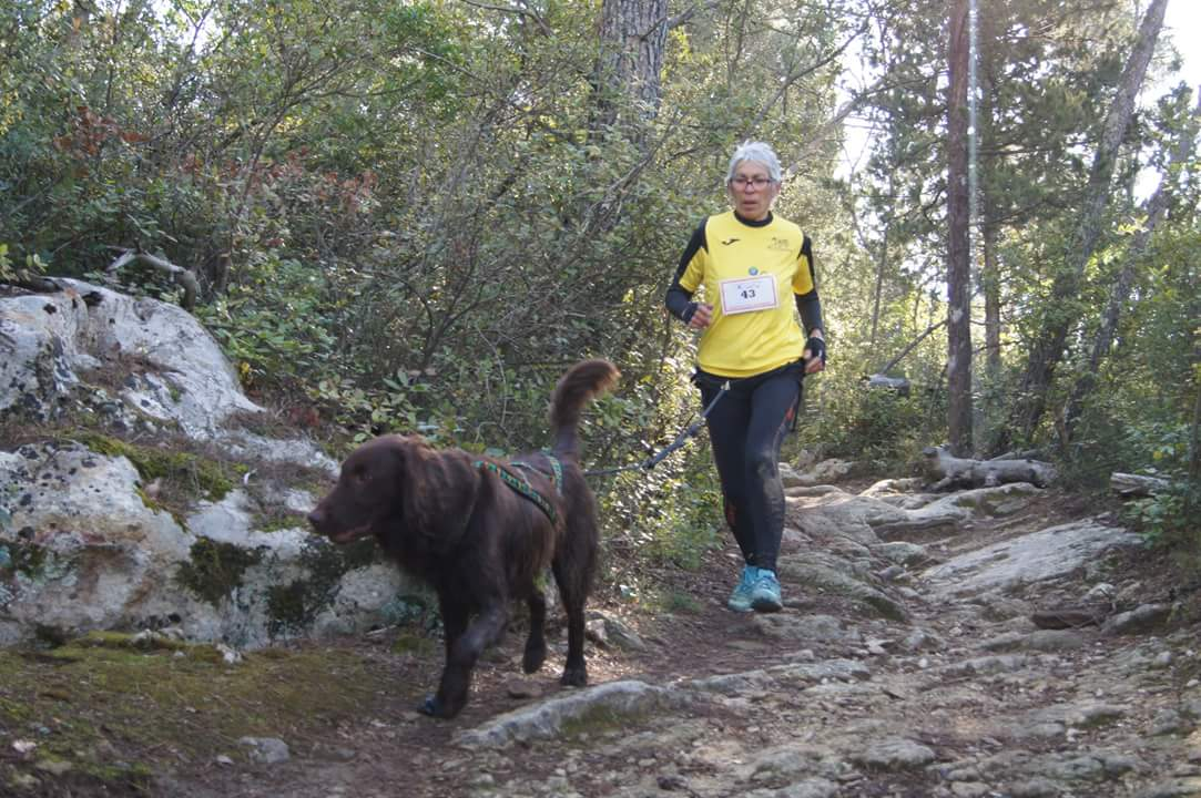 canicross des garrigues race de chien courir (2)