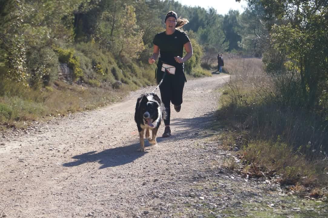 canicross des garrigues race de chien courir (4)