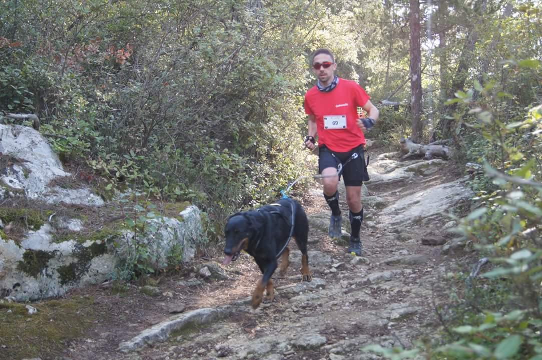 canicross des garrigues race de chien courir (7)