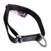 collier pour chien sport nylon reglable noir