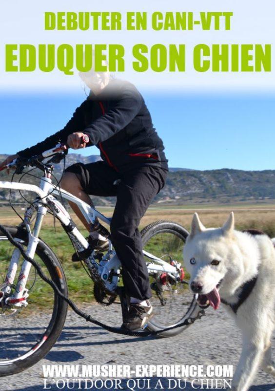 eduquer chien debuter en canivtt