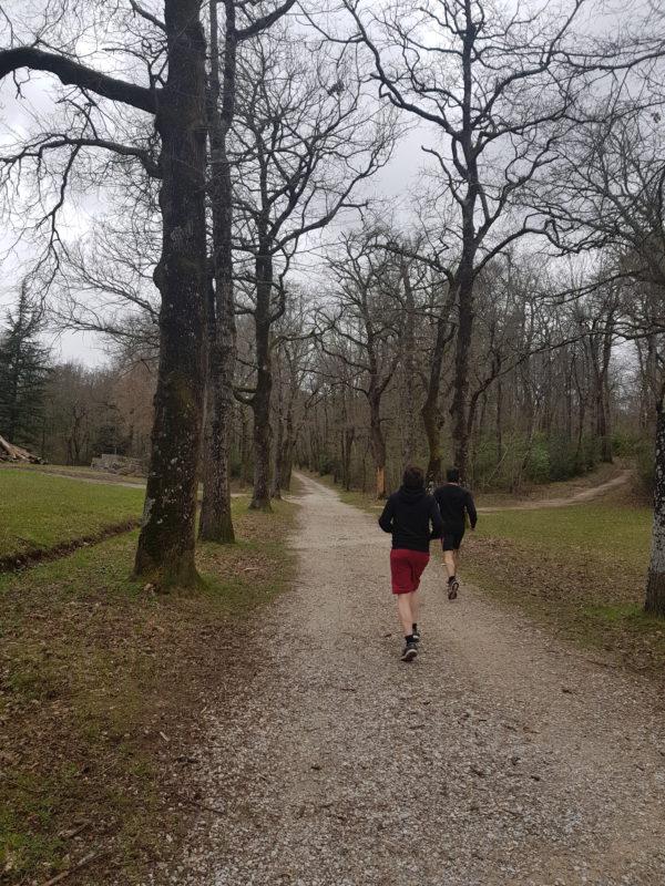 running run canicross