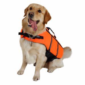 gilet de sauvetage pour chien orange gilet eau mer lac
