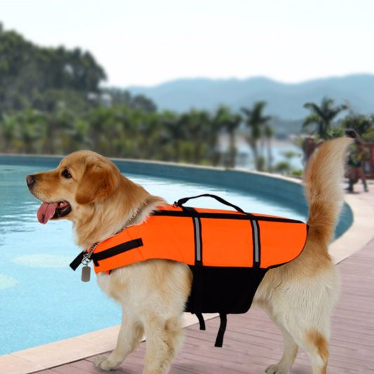 gilet de sauvetage pour chien orange golden retriever