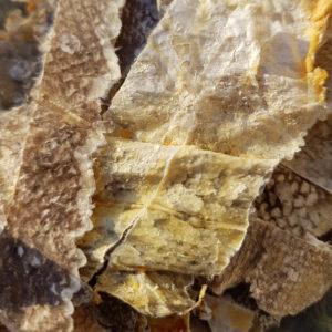 peau de poisson sechee - friandise a manger pour chien