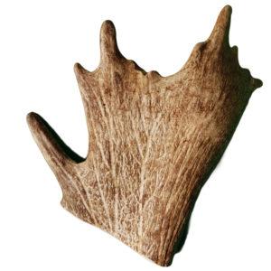 bois de daim - friandise naturelle pour chien