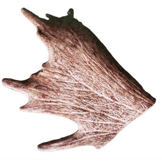 bois de daim - friandise naturelle pour grand chien