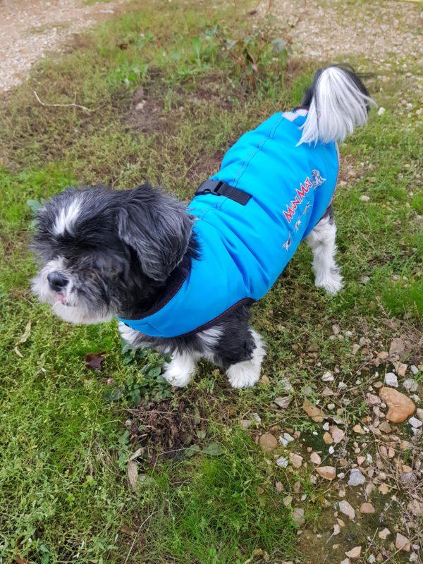 manteau d'hiver imperméable pour petit chien