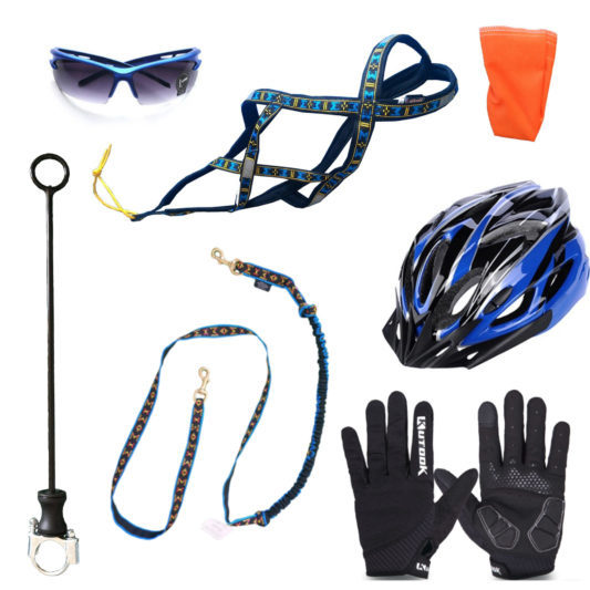kit complet cani vtt blue light premium