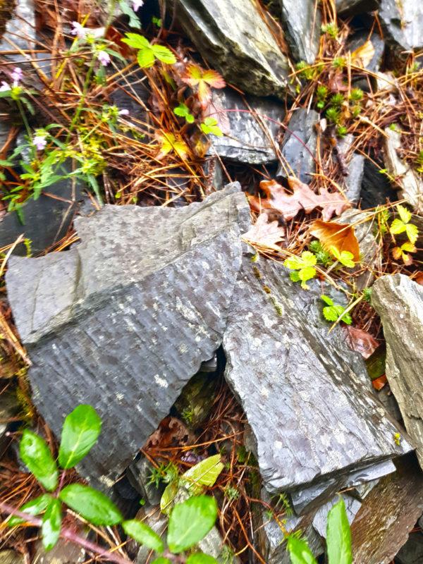 pierre ardoise nature