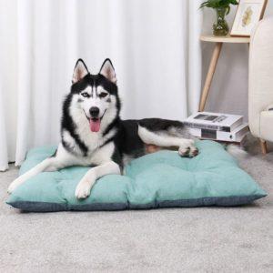 coussin pour chien husky siberien