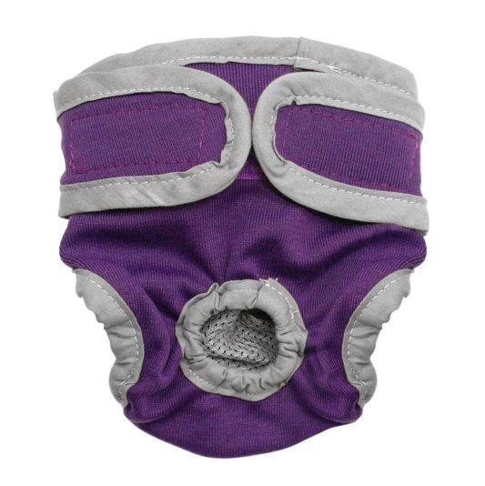 culotte de chien - chaleurs chez la chienne gris violet